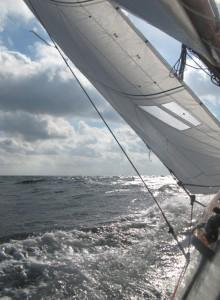 ahoi segelschule, segeln lernen am Steinhuder Meer